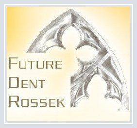 future-dent-rossek.de